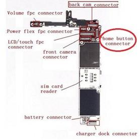 Connecteur FPC Bouton Home...